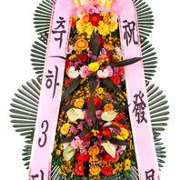 [플라워포유] 축하3단화환(高+-1) [결혼식/개업식/전국화환/축하화환]