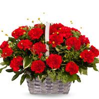 [기획상품] 카네이션바구니① [꽃바구니/결혼기념일/크리스마스/프로포즈/화이트데이/발렌타인데이]