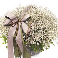 [플라워포유] 안개비 (RM_RAC8079) [꽃바구니/결혼기념일/크리스마스/프로포즈/화이트데이/발렌타인데이]