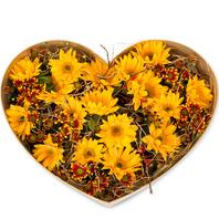 [플라워포유] 해바라기하트꽃상자 (RM_RCB3017) [꽃상자/결혼기념일/크리스마스/프로포즈/화이트데이/발렌타인데이/로즈데이/기념일/특별한날/생일선물]