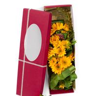 [플라워포유] 해바라기꽃상자 (RM_RCB2030) [꽃상자/결혼기념일/크리스마스/프로포즈/화이트데이/발렌타인데이/로즈데이/기념일/특별한날/생일선물]